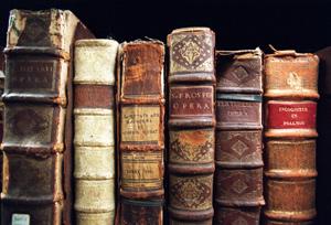 cedar-inn-library